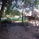 hammock/ox cart