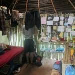 Kayla's shed, interior